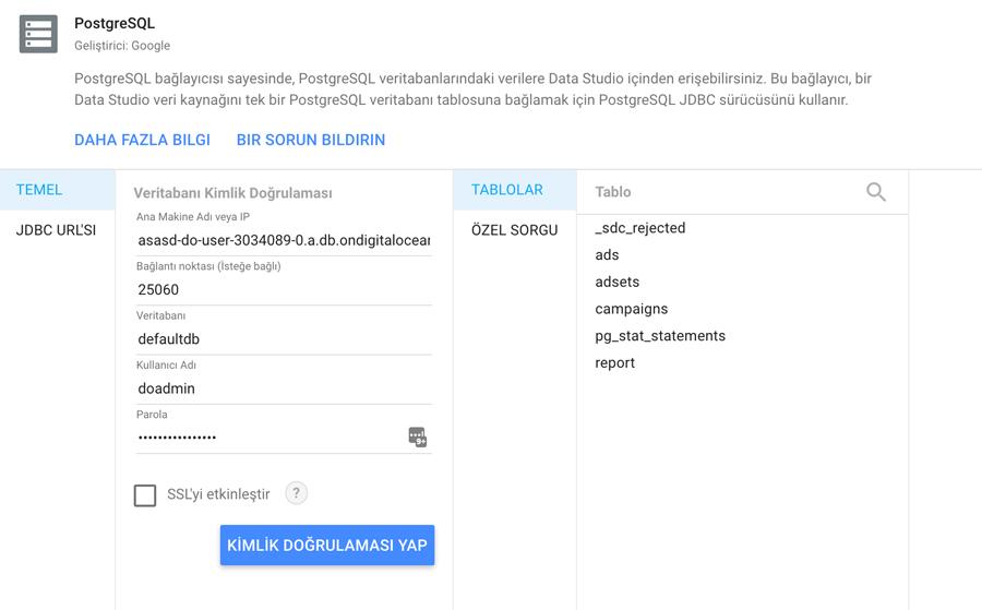 Google Data Studio - PostgreSQL Bağlantısı