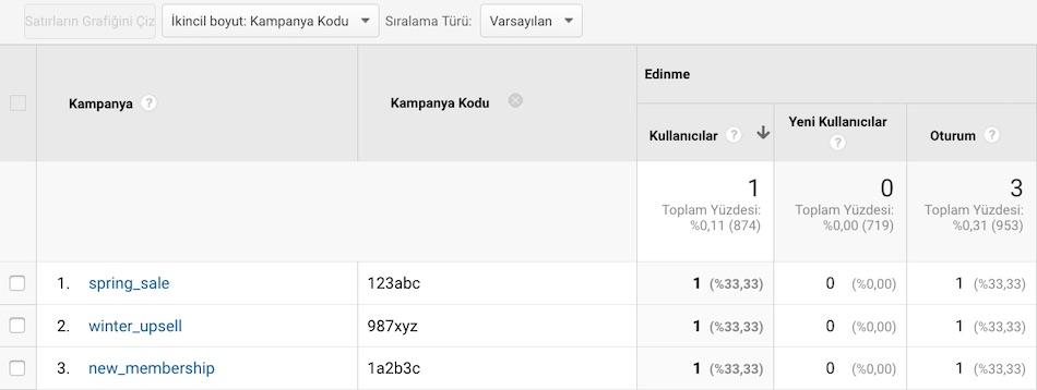 Google Analytics - Kampanya Raporu