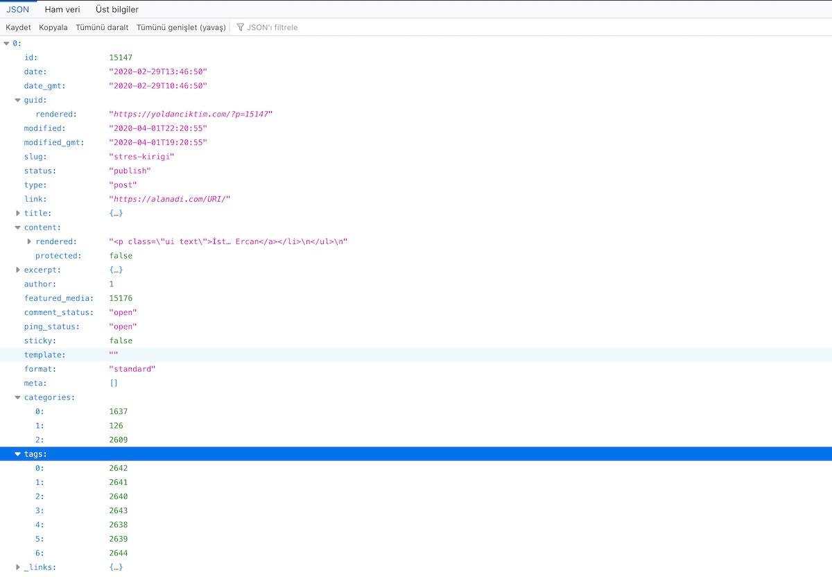 WordPress REST API Post İçeriği